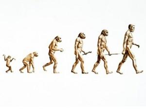 Human Origins Infographic