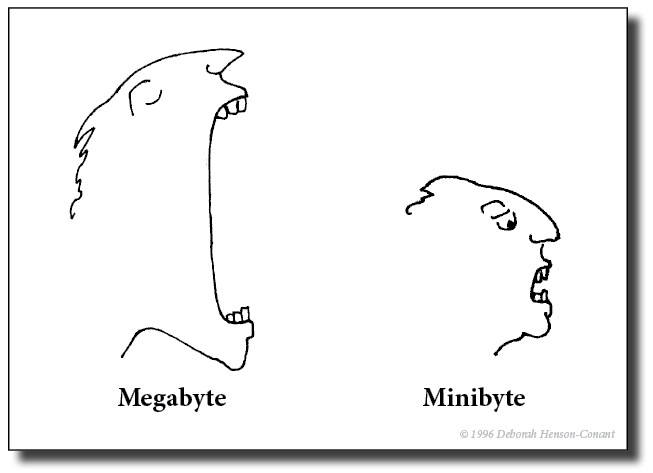 Megabyte-Minibyte-Henson-Conant