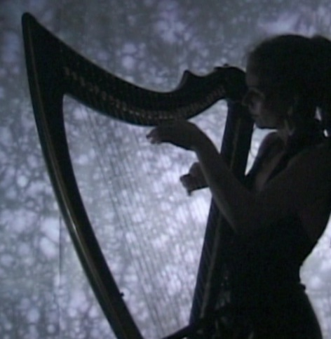 "Silhouette of Deborah Henson-Conant playing ""The Nightingale"""