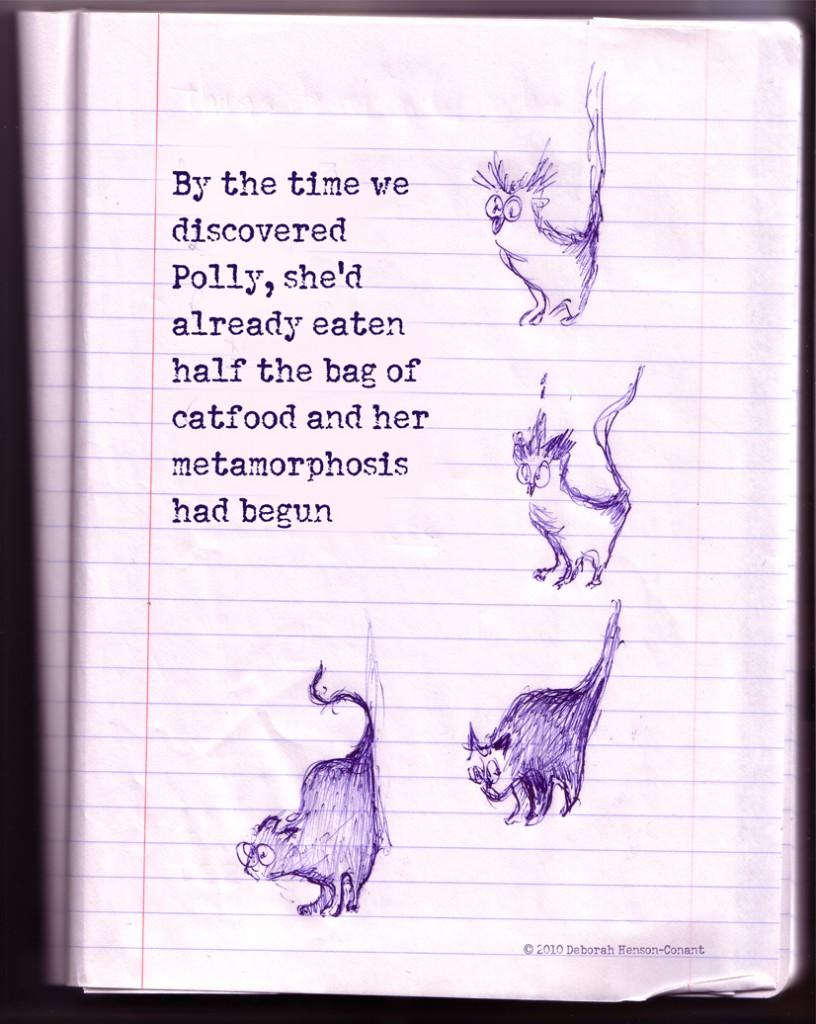 polly-metamorphosis